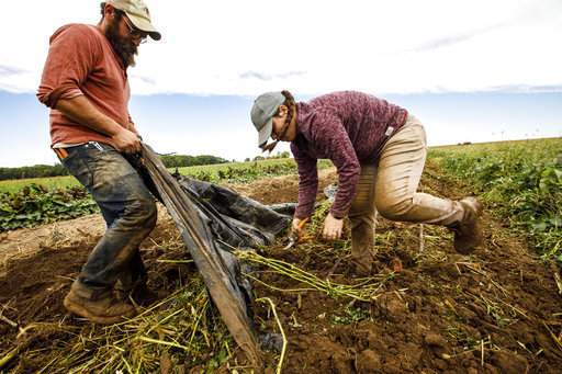 Trade association's Board backs sweeping farm workforce reform